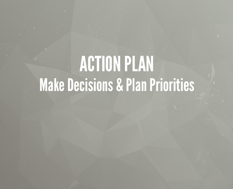 Action Plan: Make Decisions & Plan Priorities